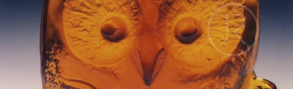 Sova – Owl