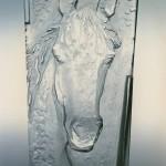 Hlava koně – Horsehead – positiv