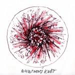 Skica plastiky Rubínový květ