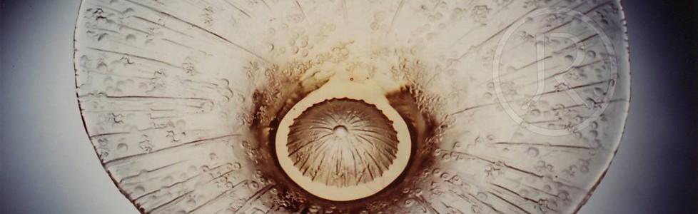 Paví oko – Peacock's feather